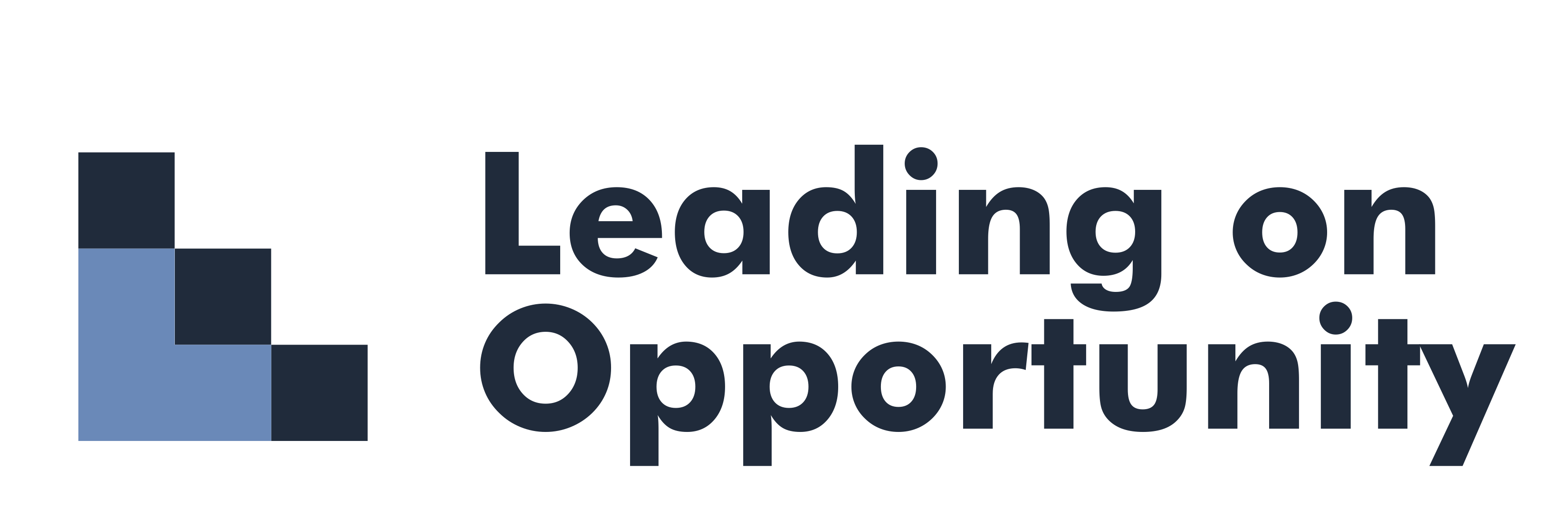 Leading on Opportunity logo