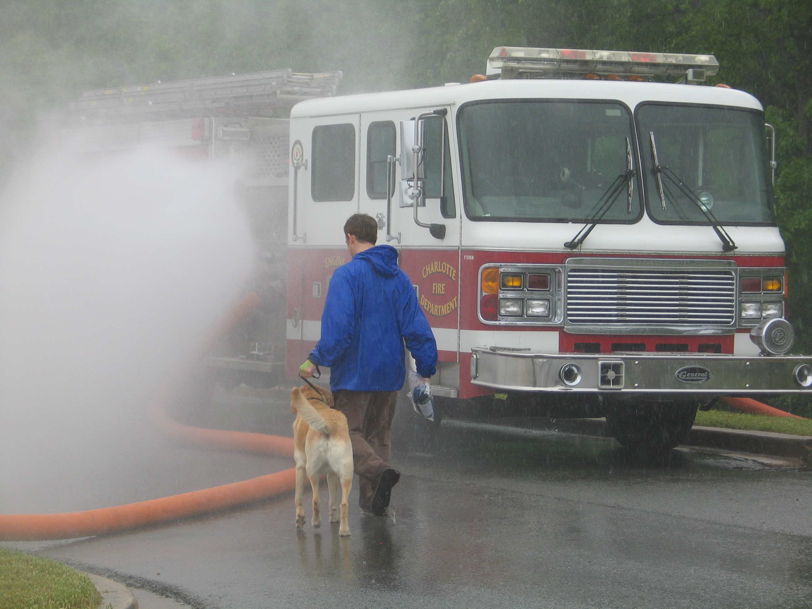 Dog walking with person near a firetruck