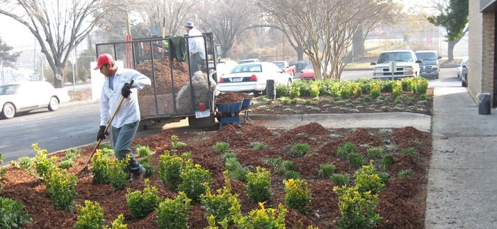City employees doing landscaping