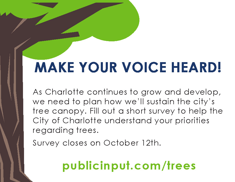 Make your voice heard! Fill out a short survey to help the city understand your priorities regarding trees.