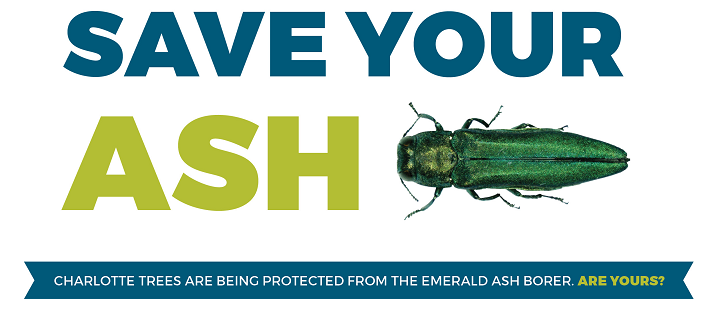 Save Your Ash! Protect it from the Emerald Ash Borer.