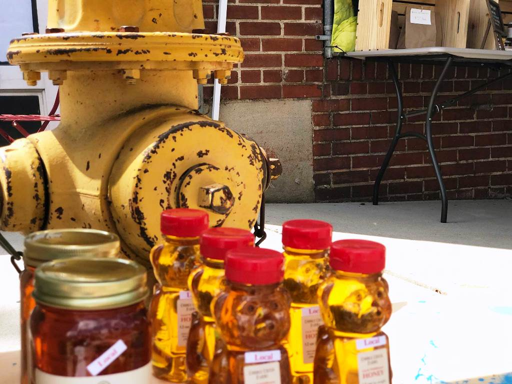 Local honey on display