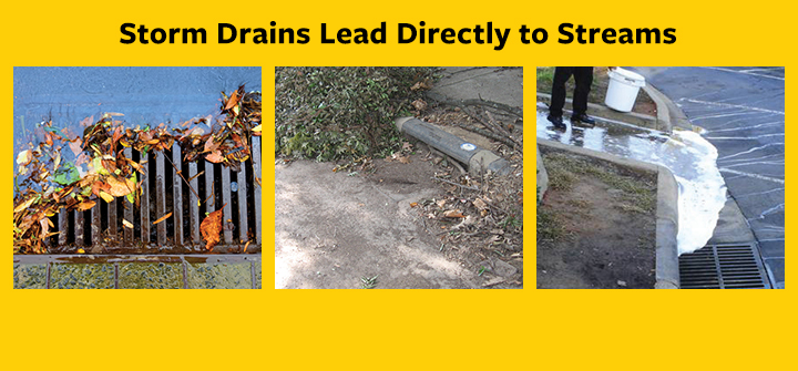 Storm Drains Lead to Streams – Check It, Clear It, Call It In!