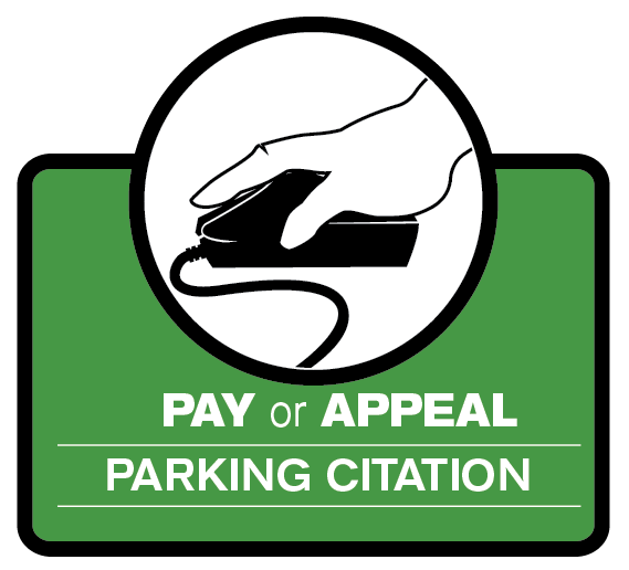 Pay Parking Citation